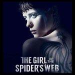 「蜘蛛の巣を払う女」が観れる動画配信サイト一覧