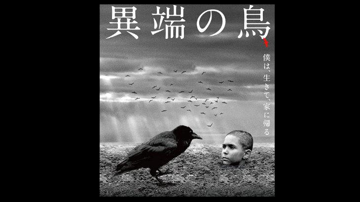 「異端の鳥」が実質無料で観れる動画配信サイト、あらすじを紹介